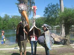 Wakulla Birds
