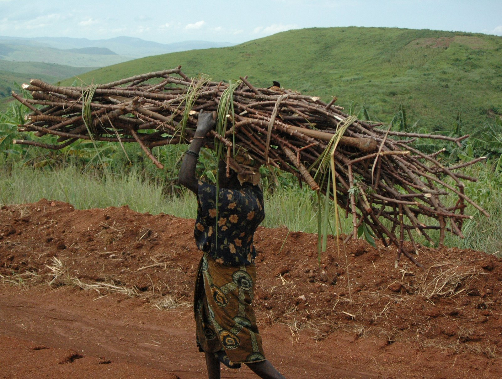[woman+with+sticks.JPG]