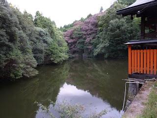 Fushimi Inari lake