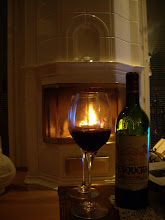 Mysigt med  brasa & gott vin