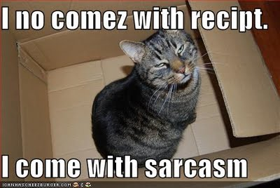 http://4.bp.blogspot.com/_2p7tRKQ7Uwg/SwWt8MB0g_I/AAAAAAAABWg/S-hBz1Ncaqo/s1600/sarcasm.jpg