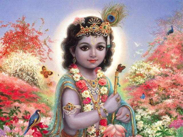lord krishna incredible beautiful pics indian god