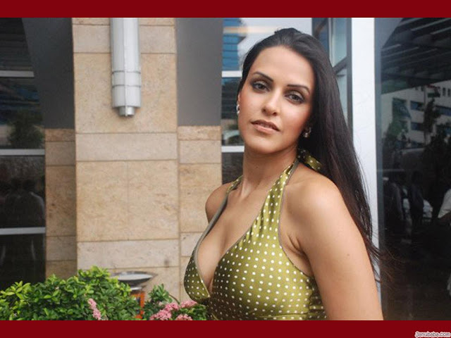 hot celebrities pics-bollywood hot actresses neha dhupia looking sex bomb in sexy pics and photos