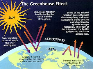 a description of how the world is changing due to the effects of global warming Global warming has caused change in the climate of the earth, causing   however, the impacts associated with human settlement along polar coasts are.