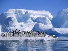 Los Climas Extremos