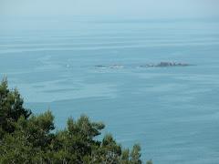 Extraño el mar
