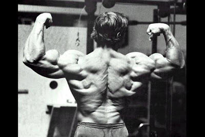 big arnold back Aylmer Personal Trainer Reveals How to Build Muscle Build an Awesome Back
