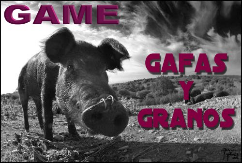 GAME - GAFAS Y GRANOS