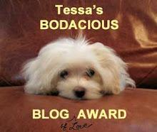 TESSA'S BODACIOUS BLOG AWARD
