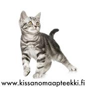 Kissan oma apteekki