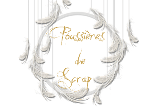 Poussires de scrap