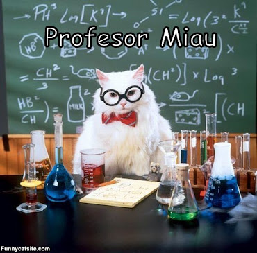 Profesor Miau
