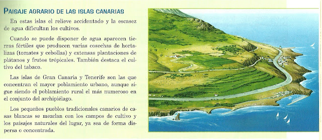 external image PAISAJE+CANARIO.jpg