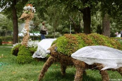 Creative Garden