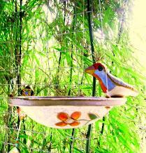 Comedor de Pássaro.