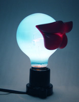 [lip+bulb.jpg]