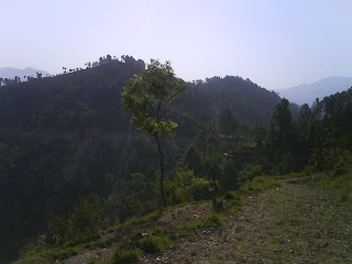 Jhindhi Dhaiyan(Near Village Chandoli Malli)