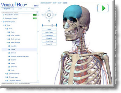 Zaidlearn Visible Body 3d Human Anatomy Visualization Tool