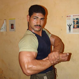 world bodybuilders pictures: handsome egyptian beautiful
