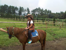 Horsey Land