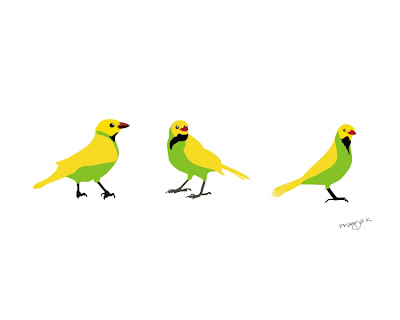 3 birds, illustration