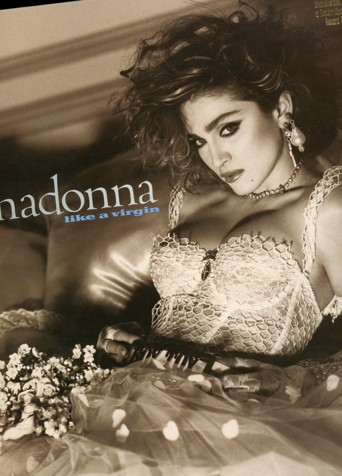 Pud whacker s madonna scrapbook like a virgin promotional copy