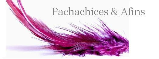 Pachachices & Afins