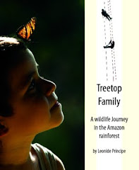 TREETOP FAMILY - A Wildlife Journey in the Amazon Rainforest (By Leonide Principe)