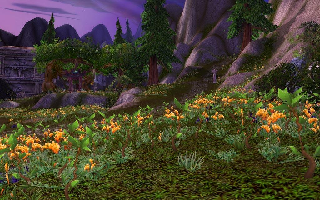 Warcraft Film Infos