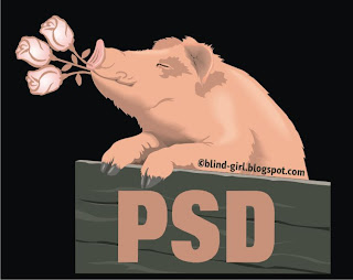partidul socialist democrat PSD sigla