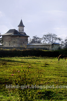manastirea Zamca Suceava