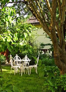 scaune albe gradina