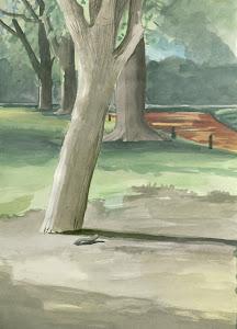Paisaje, Árboles, 21 x 29