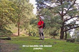 EN LA GALERÍA DEL DRAGO