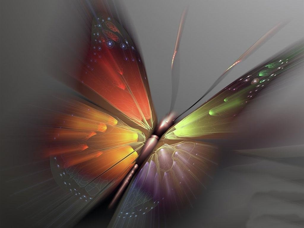 Colorful Butterfly Art