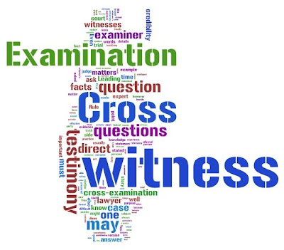 tag cloud text cloud rules of evidence justice pronove