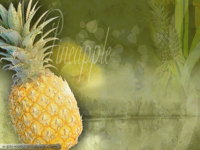 pineapple fruit wallpaper