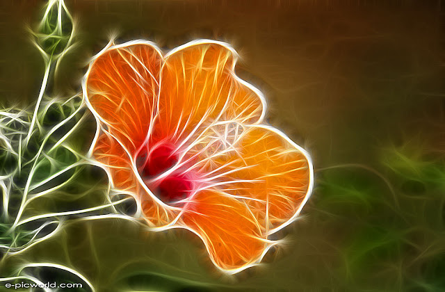corak bunga - Quoteko.com