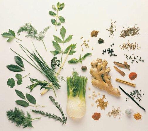 Diabetes indian herbal medicine 2014