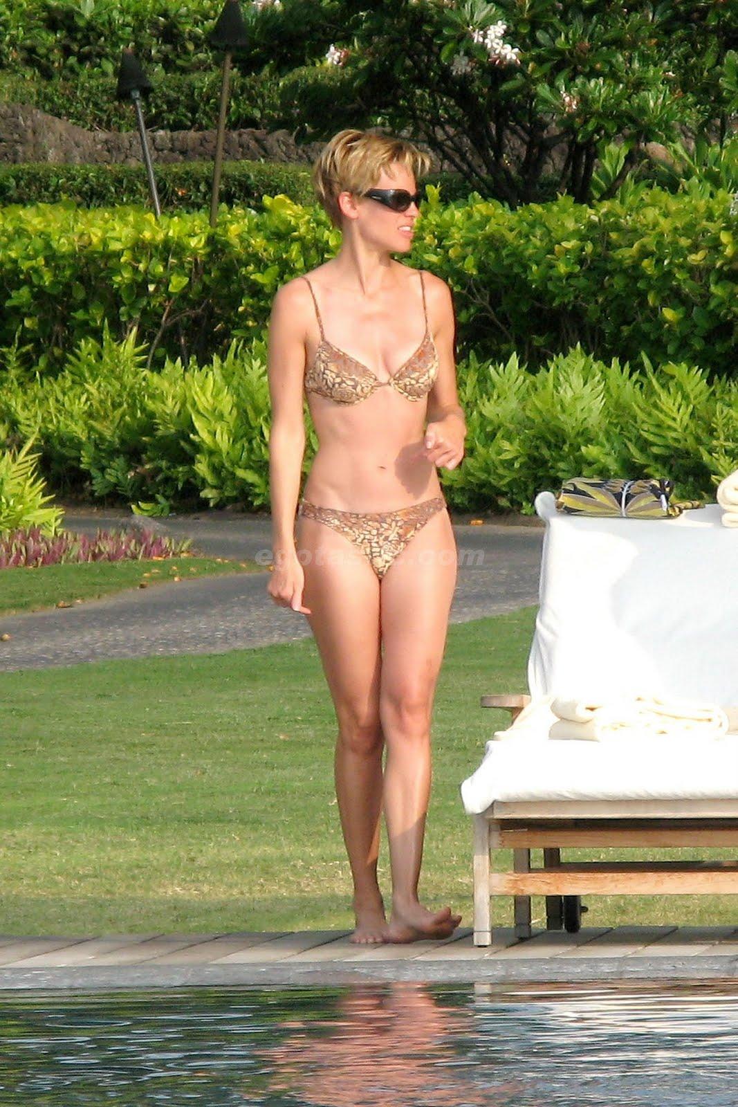 http://4.bp.blogspot.com/_3G4dg-GWVKI/TJNNSd8duSI/AAAAAAAAIAA/Y_kgubTj_7o/s1600/12635_hilary-swank-bikini-1-20_123_658lo.jpg
