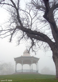 misty rotunda