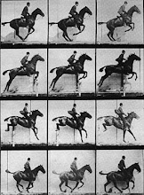 Eadweard Muybridge, Horse Jumping