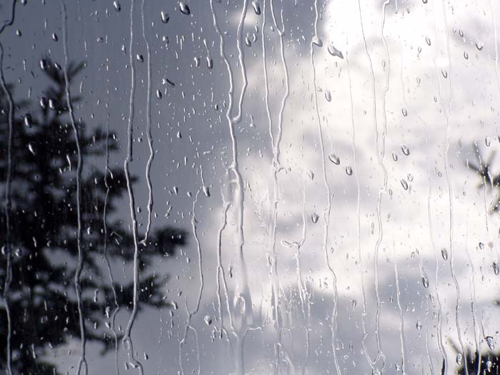 عکس قطرات باران متحرک
