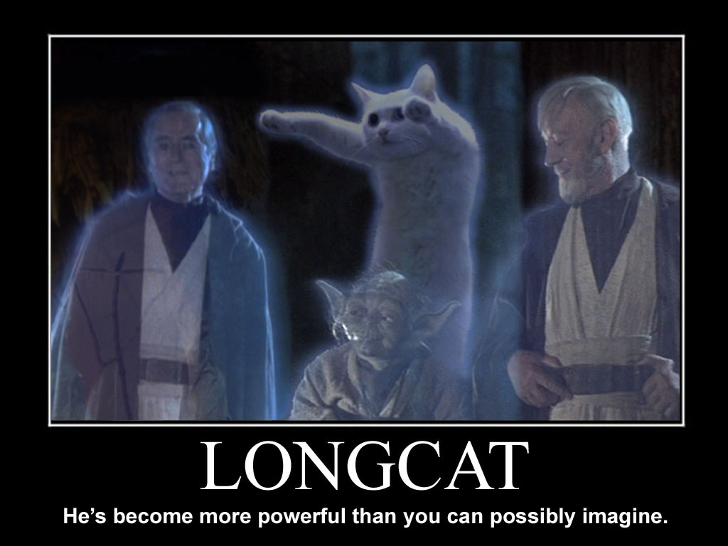 Longcat demotivational poster