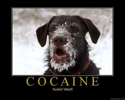 Cocaine Demotivational Poster
