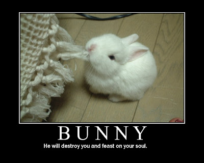 Bunny Demotivational Poster