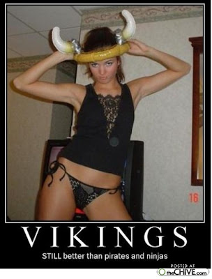 Vikings Demotivational Poster