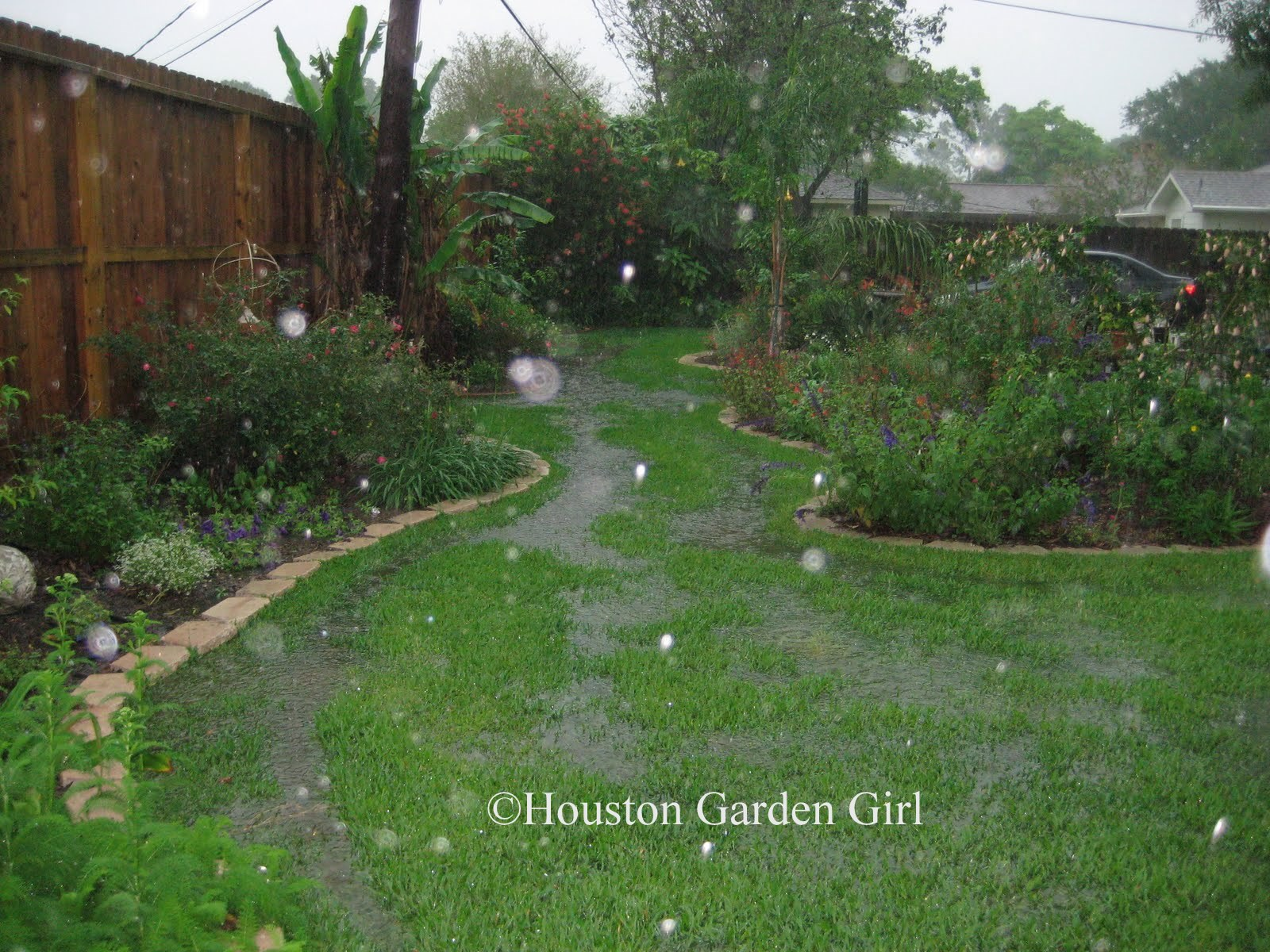houston garden rain garden