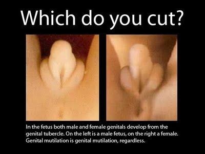 Double penetration procedure