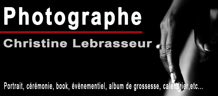 Christine Lebrasseur-Gillard